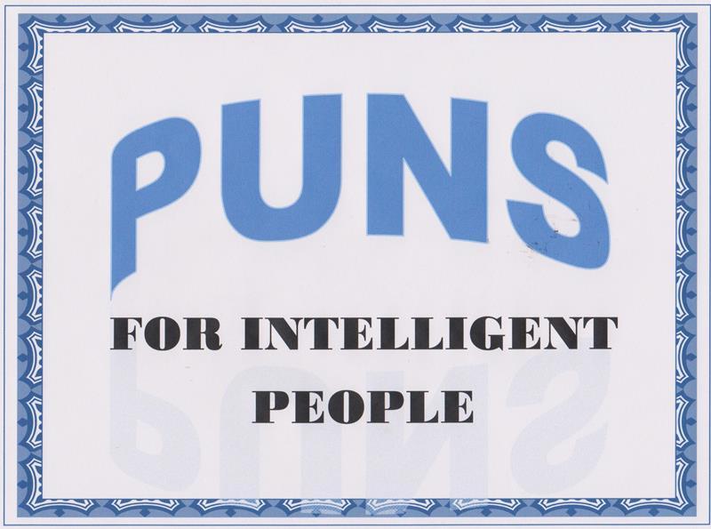 Sunny Puns #17 | Writing is Fun-damental– from Gwendolyn Hoff
