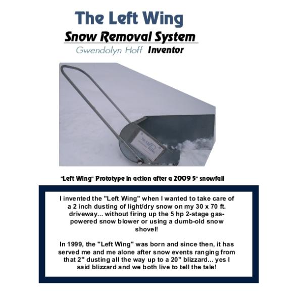 Left Wing-001