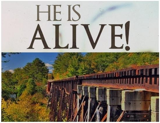 Alive-001