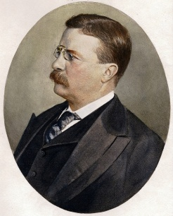 1900_Teddy-Roosevelt