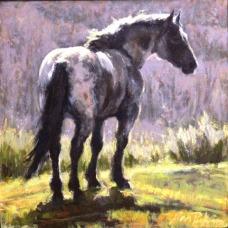 drafthorse