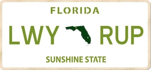 Florida plate-001