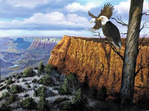 grand canyon lookout by harold shull