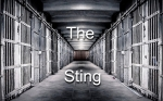 the-sting-001