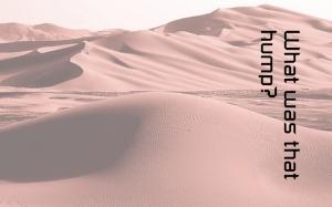 dunes-001